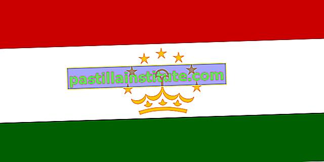 Bandiera del Tagikistan