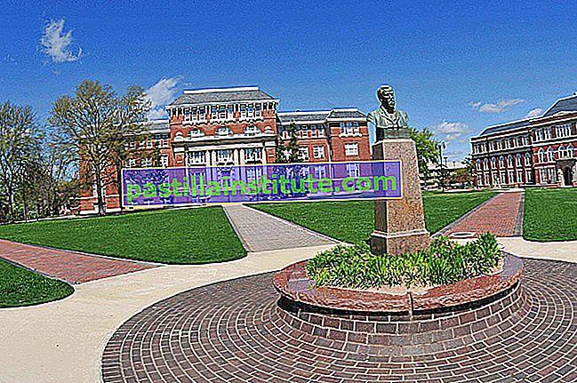 Université d'État du Mississippi