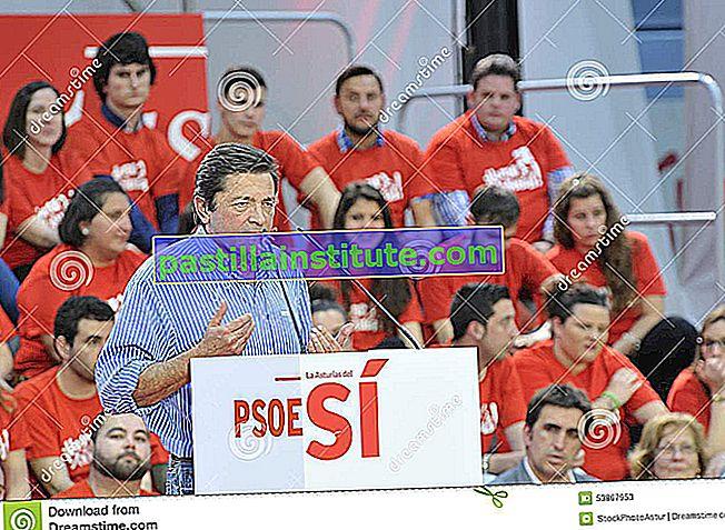 İspanyol Sosyalist İşçi Partisi