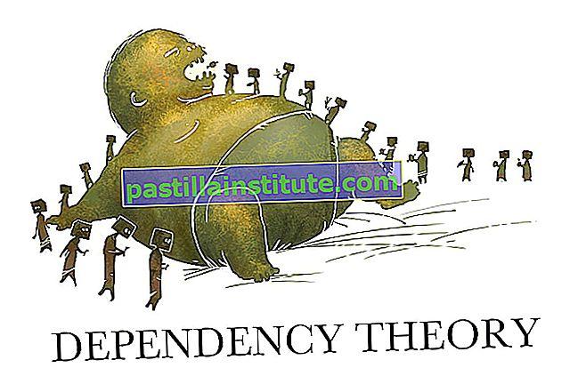 Teori om resursberoende