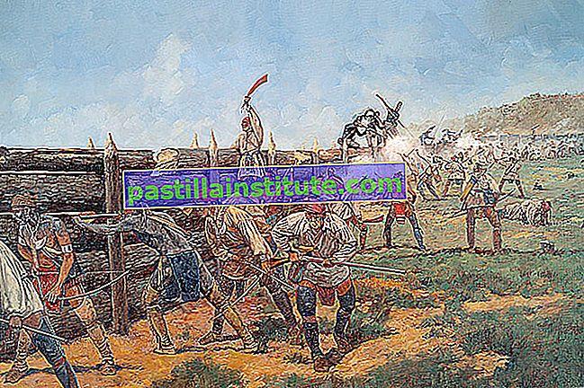 Battaglia di Horseshoe Bend