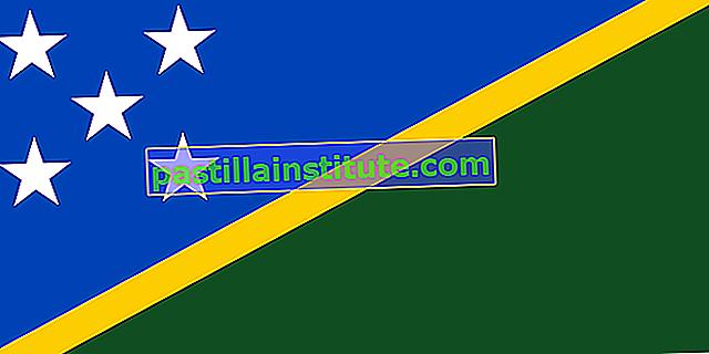 Bandiera delle Isole Salomone