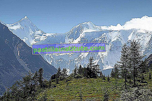 Altaiska språk