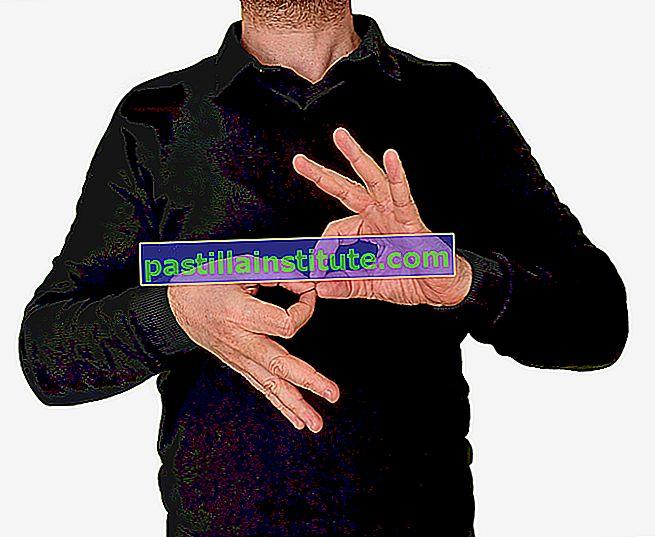 Langue des signes américaine