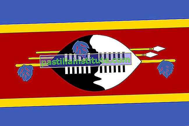 Bandiera dell'Eswatini