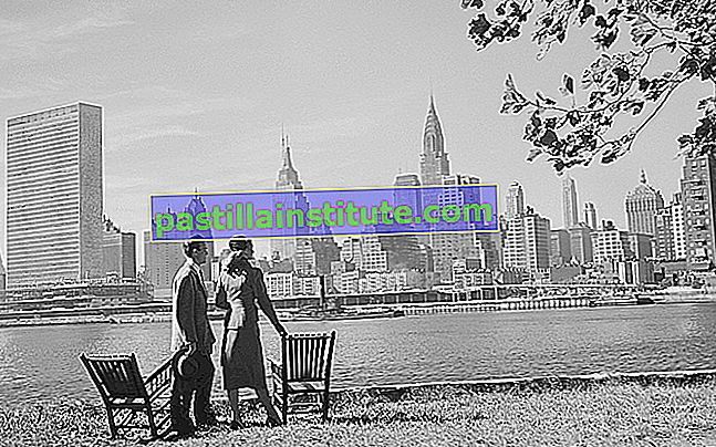 New York 1950-översikt