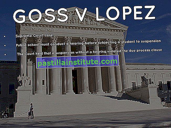 Goss mot Lopez